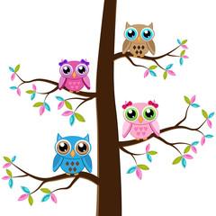 Four owls on a tree