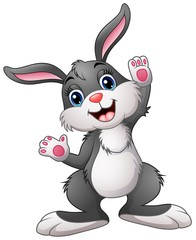 Happy rabbit cartoon