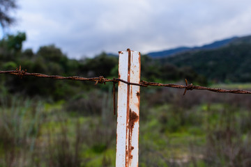 Barbed wire fence post