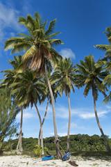 Südsee-Aitutaki-12292