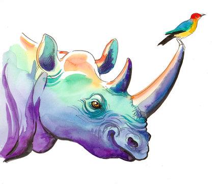 Rhino and bird