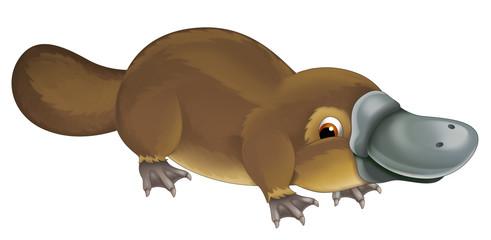 cartoon animal happy platypus illustration for children
