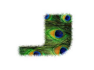 High resolution upper case letter J made of peacock feathers alphabet isolated on white background