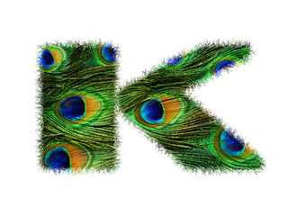 High resolution upper case letter K made of peacock feathers alphabet isolated on white background