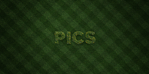 PICS - fresh Grass letters with flowers and dandelions - 3D rendered royalty free stock image. Can be used for online banner ads and direct mailers..