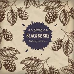 Blackberry Raspberry design template. Blackberry Raspberry branch engraving illustration. Vector illustration