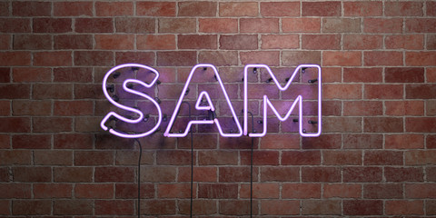 SAM - fluorescent Neon tube Sign on brickwork - Front view - 3D rendered royalty free stock picture. Can be used for online banner ads and direct mailers..
