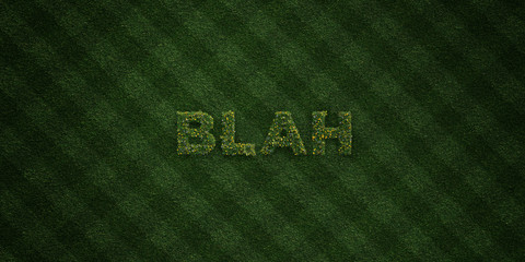 BLAH - fresh Grass letters with flowers and dandelions - 3D rendered royalty free stock image. Can be used for online banner ads and direct mailers..