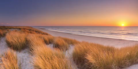 Dunes and beach at sunset on Texel island, The Netherlands Wall mural