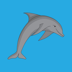 Vector image, dolphin on a blue background.