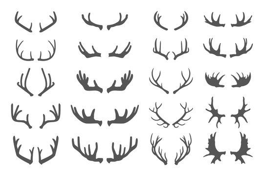 Deer antlers set.