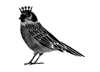 Zeichnung eines königlichen Vogels. Ein Vogel mit einer Krone Wall mural