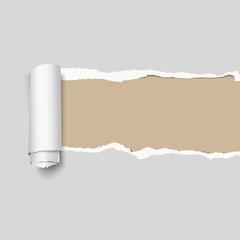 Realistic vector gray torn paper.