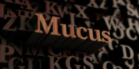 mucus - Wooden 3D rendered letters/message.  Can be used for an online banner ad or a print postcard.