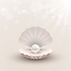 Shell with pearl inside on abstract background, vector illustration