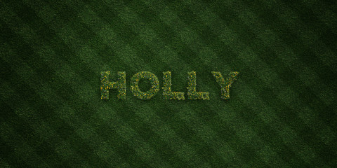 HOLLY - fresh Grass letters with flowers and dandelions - 3D rendered royalty free stock image. Can be used for online banner ads and direct mailers..