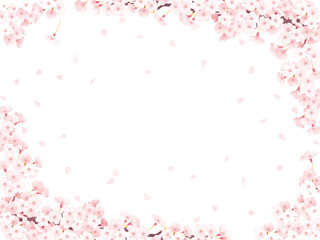 さくら花びら白フレーム