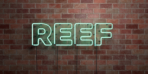 REEF - fluorescent Neon tube Sign on brickwork - Front view - 3D rendered royalty free stock picture. Can be used for online banner ads and direct mailers..