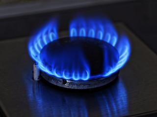 Flames of blue gas. Close up burning fire ring from a kitchen gas stove.