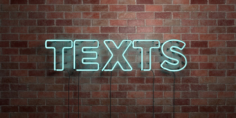 TEXTS - fluorescent Neon tube Sign on brickwork - Front view - 3D rendered royalty free stock picture. Can be used for online banner ads and direct mailers..