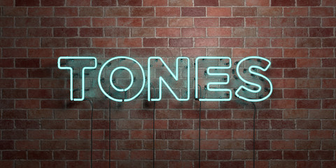 TONES - fluorescent Neon tube Sign on brickwork - Front view - 3D rendered royalty free stock picture. Can be used for online banner ads and direct mailers..