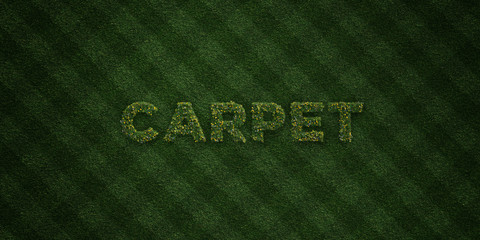 CARPET - fresh Grass letters with flowers and dandelions - 3D rendered royalty free stock image. Can be used for online banner ads and direct mailers..