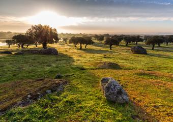 Dawn in Extremadura.
