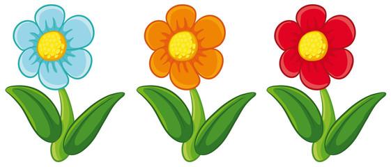 Drei niedliche Frühlingsblumen Vektor-Illustration