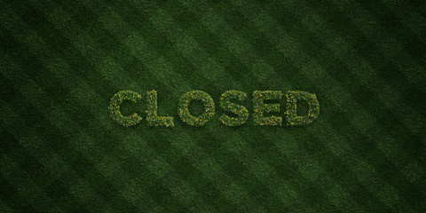 CLOSED - fresh Grass letters with flowers and dandelions - 3D rendered royalty free stock image. Can be used for online banner ads and direct mailers..