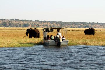 Boot mit Touristen beobachtet Elefanten im Chobe Nationalpark
