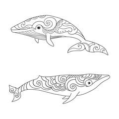Cartoon vector sea whale. Vector sketch doodle line art.