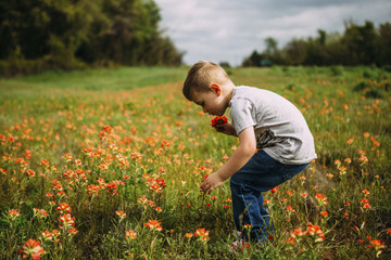 Side view of boy plucking flowers while standing on field