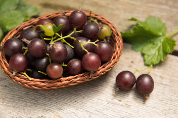 Berry black currant in a basket on wooden background