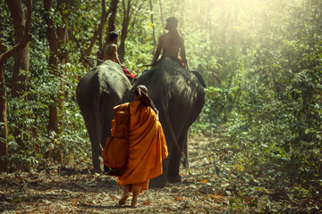 Monk or priest Walking behind elephant in the jungle.