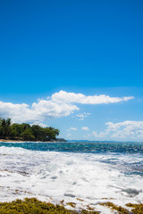 Tropical Seashore. Island and waves