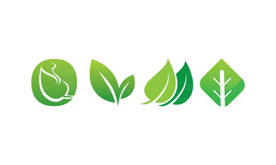 leaf04