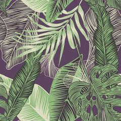 Foto op Canvas Tropische Bladeren tropical plants
