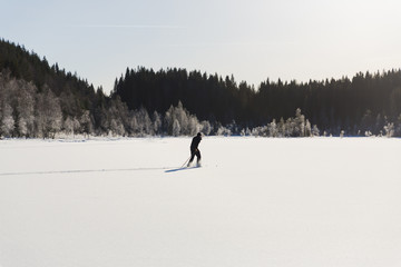 Skier in the middle of a snow-covered woods around the lake on a sunny day