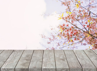 Empty old wooden table with Sakura flower and sunlight background