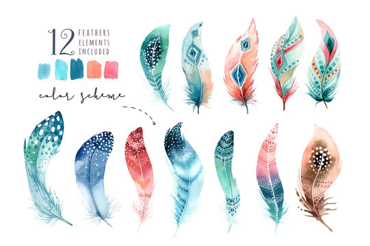 Hand drawn watercolor paintings vibrant feather set. Boho style wings. illustration isolated on white. Bird fly design for T-shirt, invitation, wedding card.