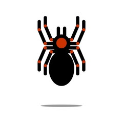 Tarantula vector icon
