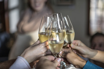 Group of friends raising a toast with champagne glasses