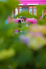 Groom and bride in front of a purple house