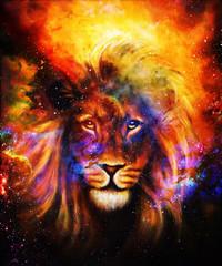 Portrait lion in cosmic space. Eye contact.