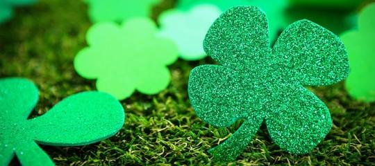 St Patricks Day shamrocks on grass