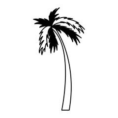 tree palm silhouette icon vector illustration design