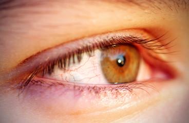 глаз человека в фокусе белок глаза