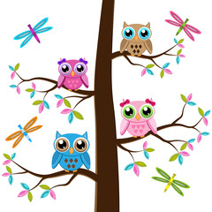 Four colorful owls sitting on the tree on a white background