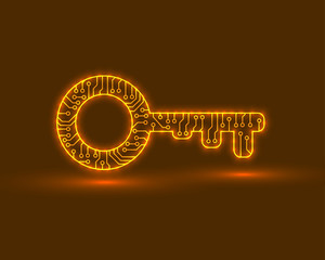 Abstract key to the door. Electronic circuit. Vector illustration