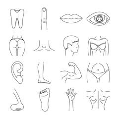 Body parts icons set, outline style
